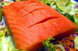 salmon-seafood-fish-restaurant-cuisine-gourmet